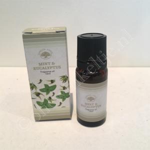 Mint eucalyptus geurolie green tree